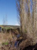 Arroyo de los Toriles